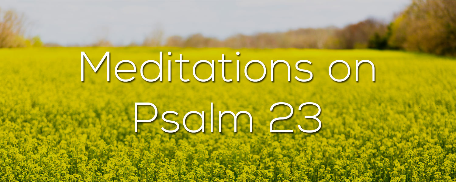 Meditations on Psalm 23
